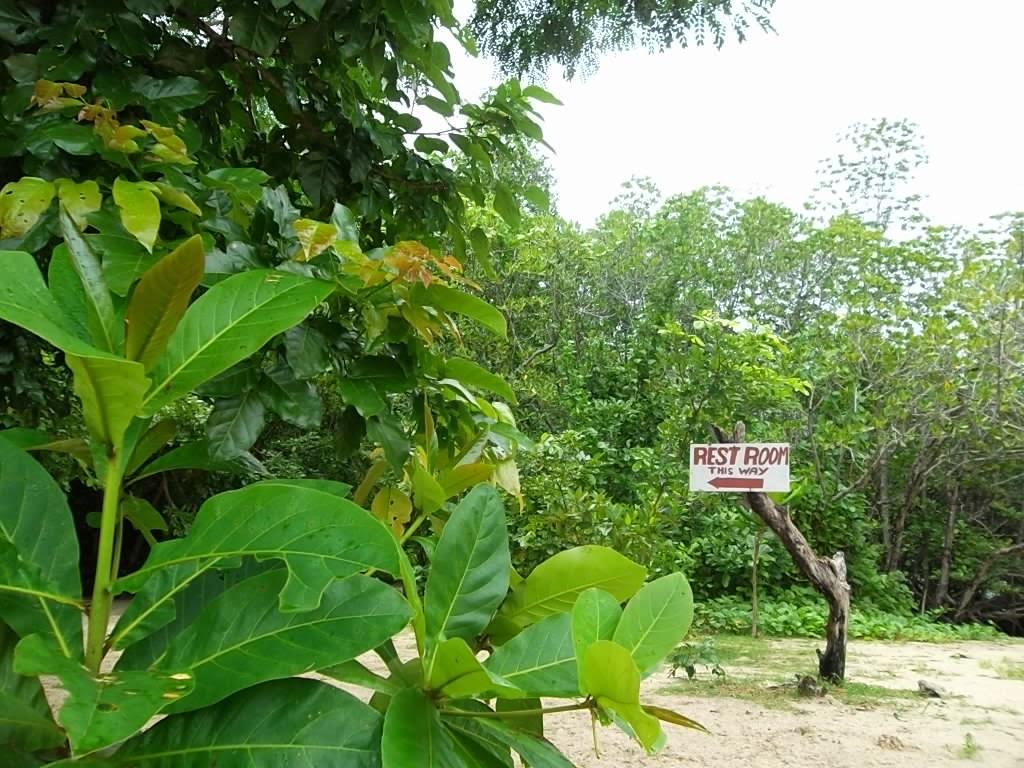 Snake Island El Nido