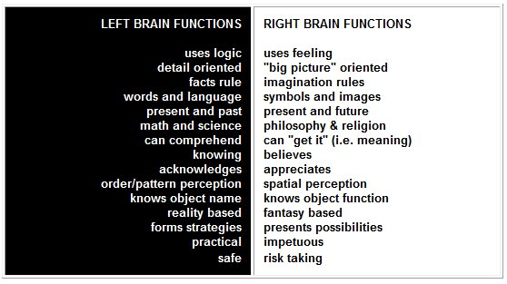 The left side of the brain specializes in