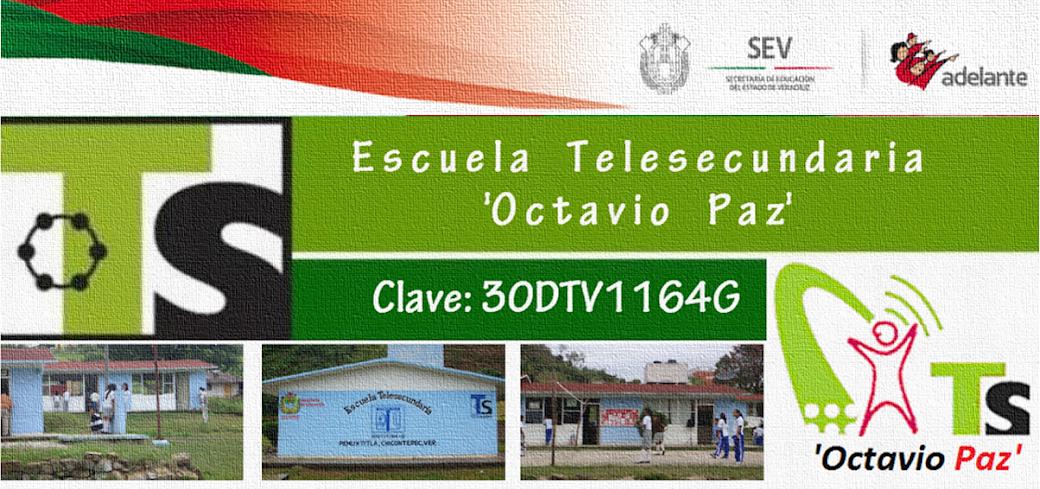 telesecundaria30DTV1164G