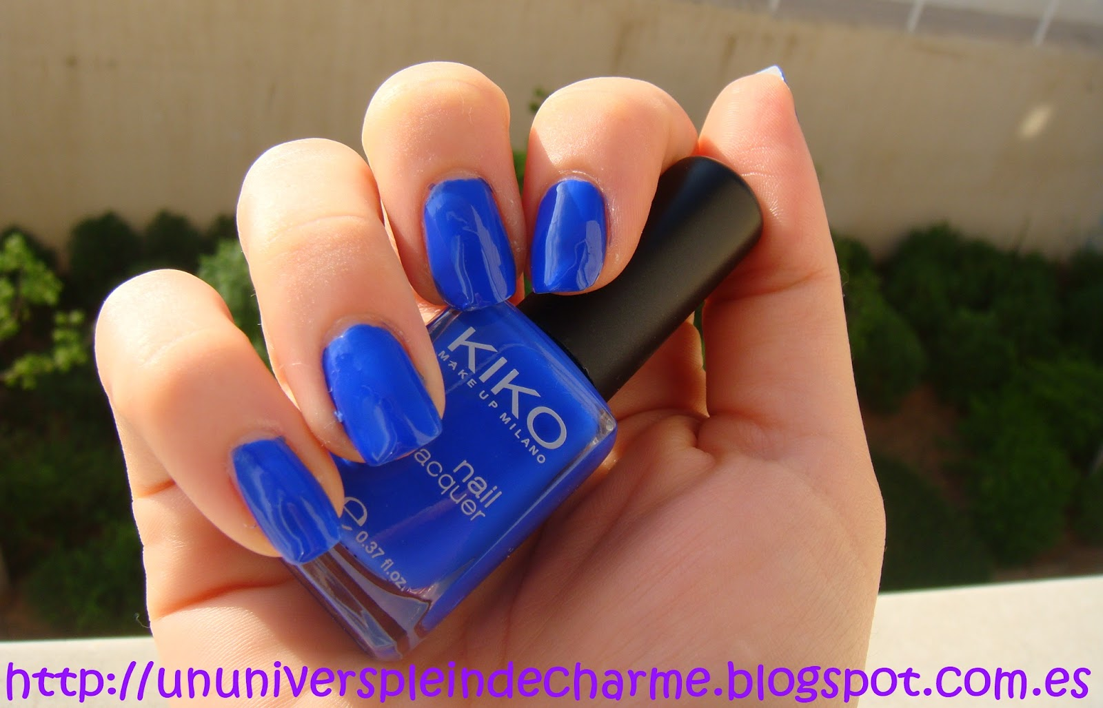 Mauvedelle: #336 de KIKO: Azul Vibrante