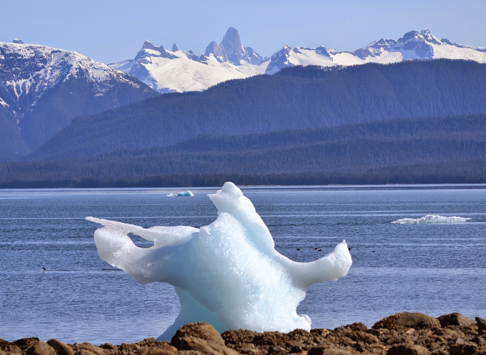 Run and Stitch - Alaskan icebergs