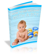 Recommended Reading This Week - How To Get Pregnant With A Boy