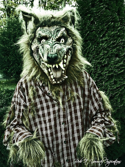 Easy diy werewolf costume redo it yourself inspirations easy diy zombied the photo by using picmonkey solutioingenieria Choice Image