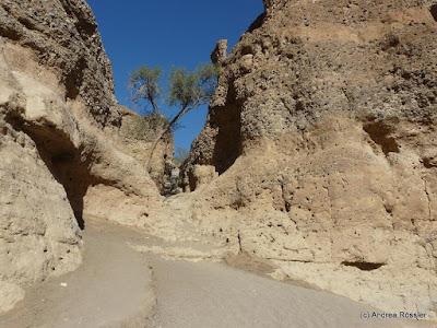 Reisen Afrika Namibia Sesriem Canyon