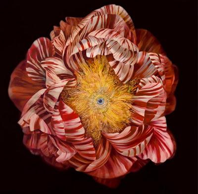 modernas-y-decorativas-flores