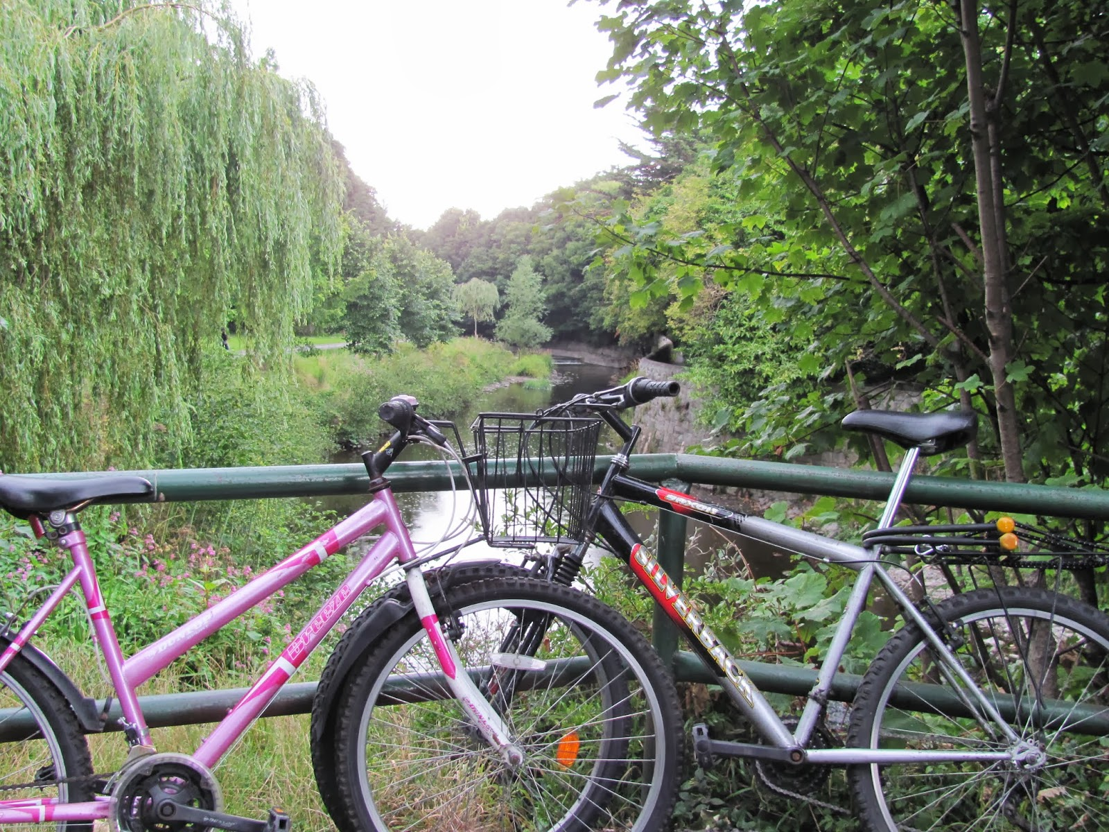 The bikes are parked on a railing on the River Dodder in Dublin, Ireland
