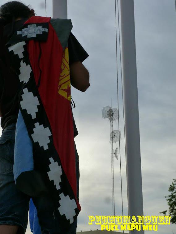 Huenu foihie : Bandera politica Mapuche