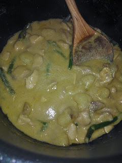 Chicken Thai Green Curry Bristol