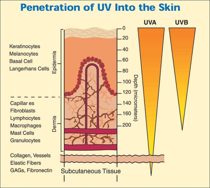 Ultraviolet UV Radiation - Food and Drug Administration