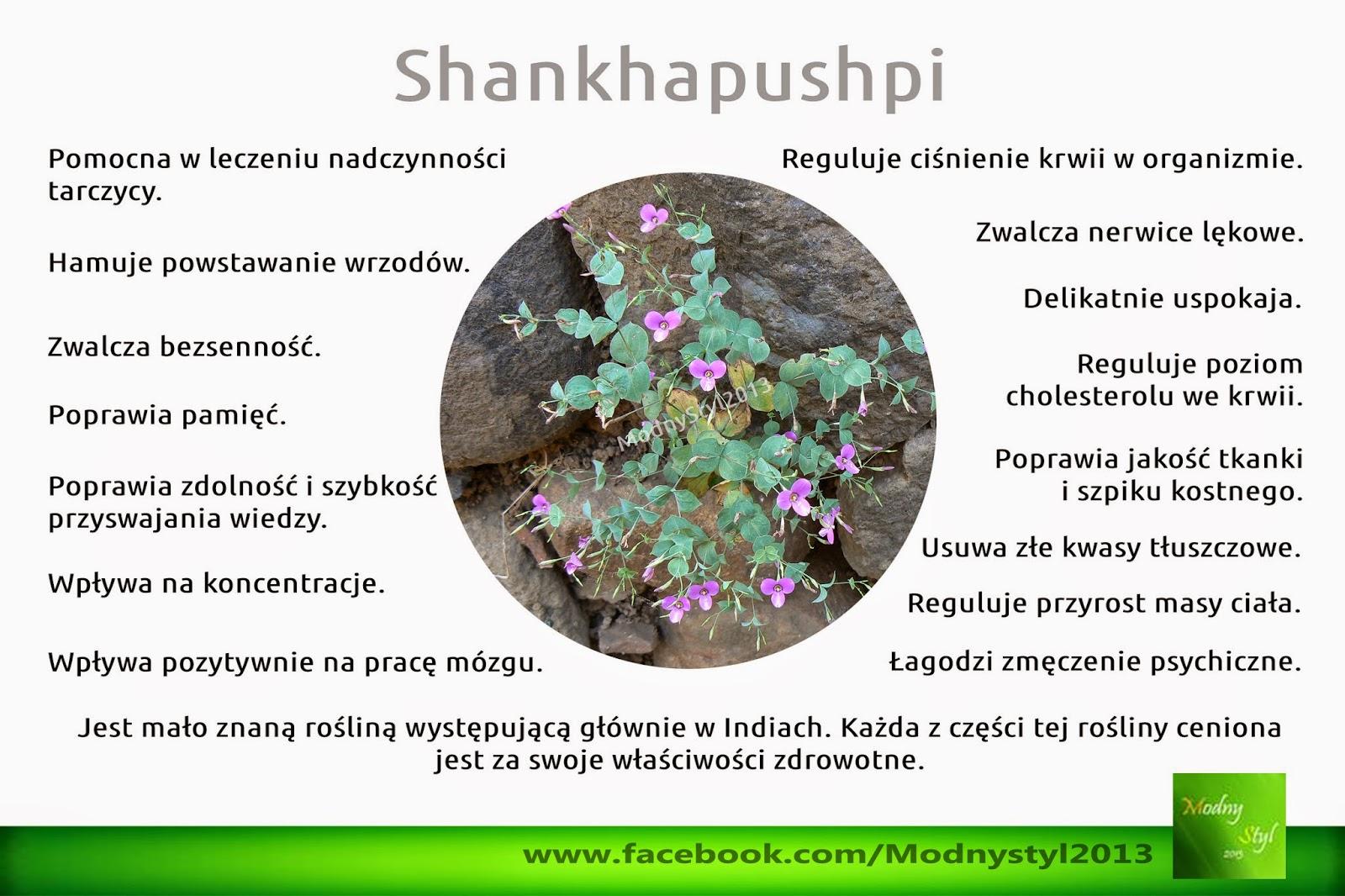 Shankhapushpi