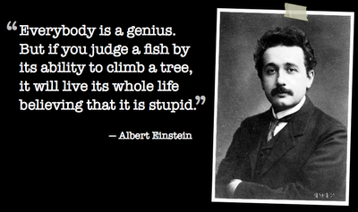 Totally Brainsome Einstein Quote