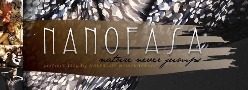 Nanofasa