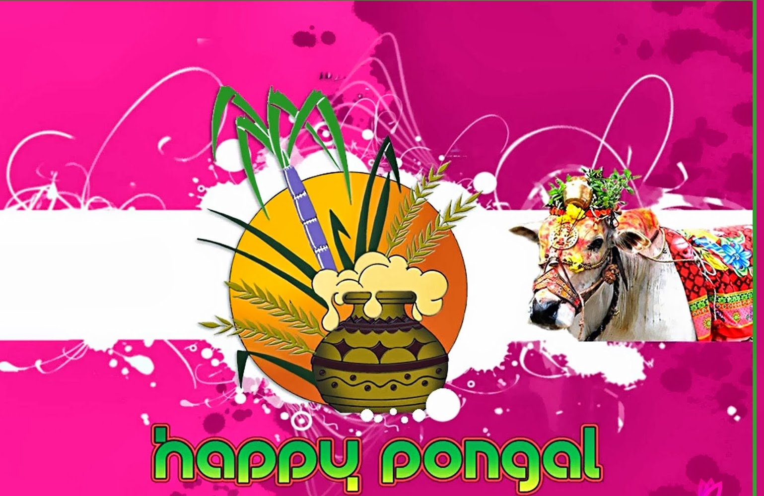 harvest festival pongal Lily tells us about the four-day harvest festival, dedicated to the sun, in tamil  nadu it's also celebrated in other states in south india it means.