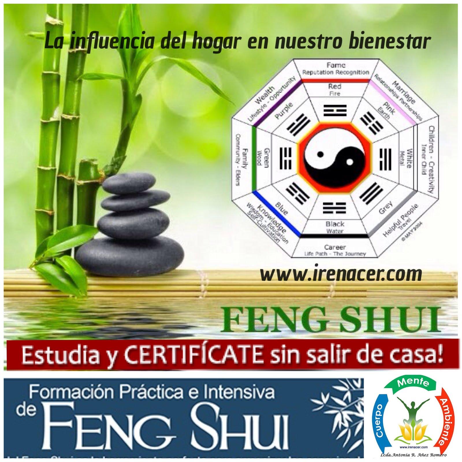 FORMACIÓN FENG SHUI PRÁCTICO