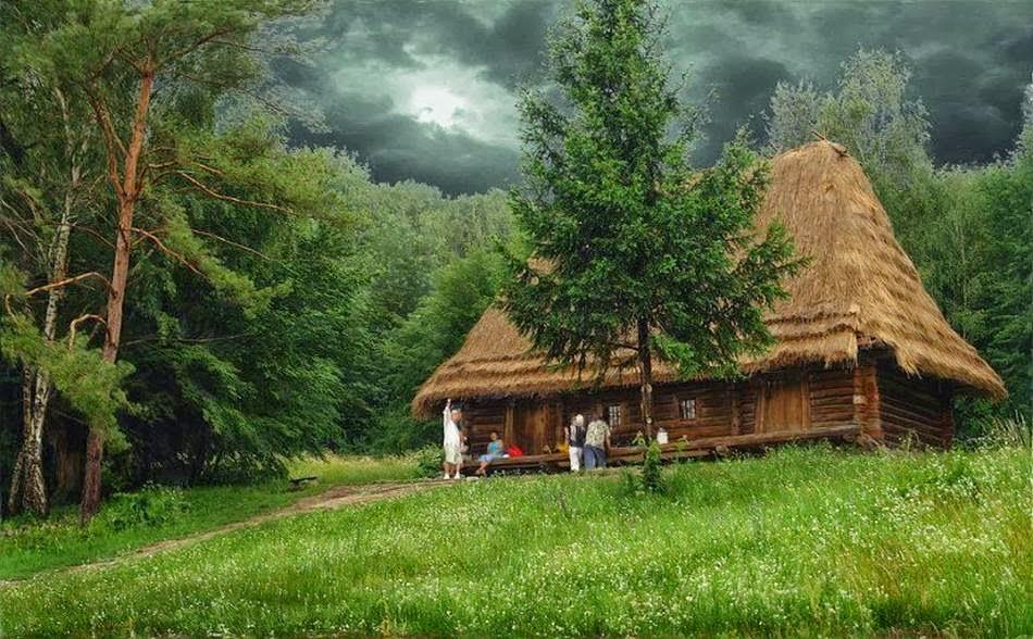 Las más bellas cabañas del bosque.