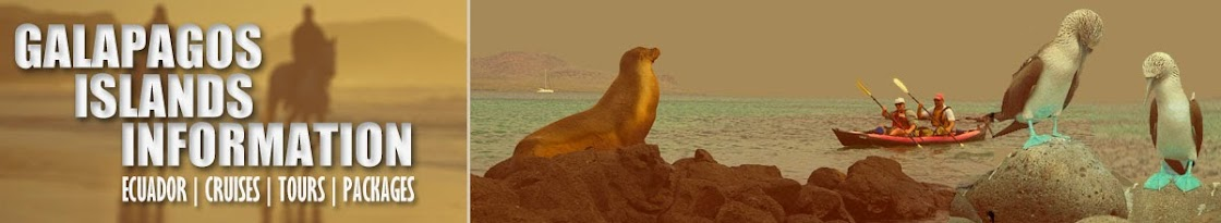 Galapagos Islands Information | Ecuador | Cruises | Tours