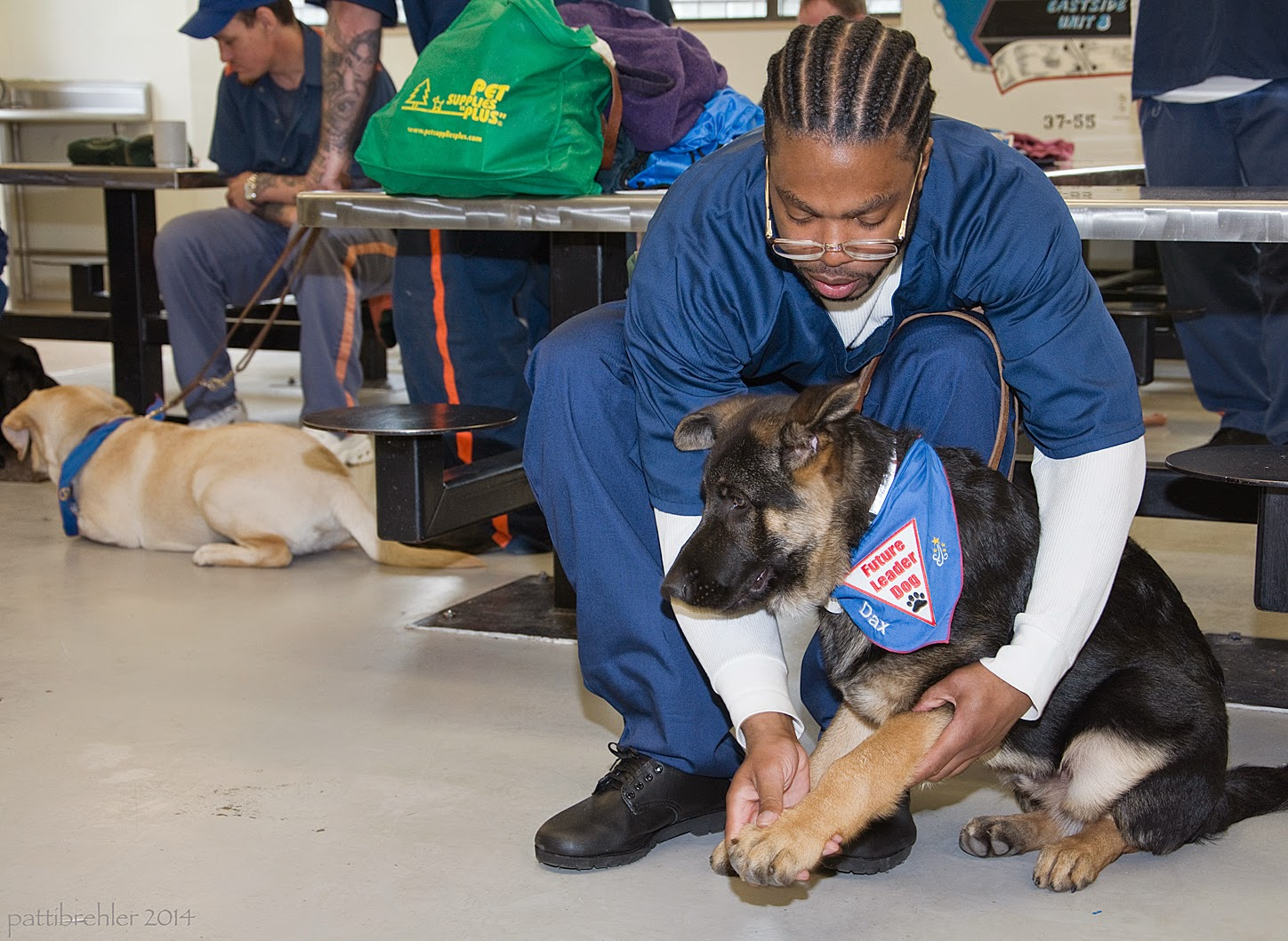 An african american man dressed in the blue prison uniform is sitting on a lunch table stool leaning down toward a german shepherd puppy that is sitting on a tile floor. The man is reaching down and checking the puppy's front paws. The puppy is wearing a blue Future Leader Dog bandana. In the background to the left is another man sitting on a stool and looking at a yellow lab that is lying down on the floor.