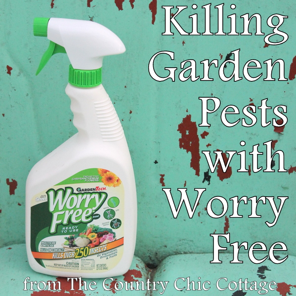 Killing Garden Pests with Worry Free Ready to Use plus a $25 gift card giveaway that you don't want to miss!