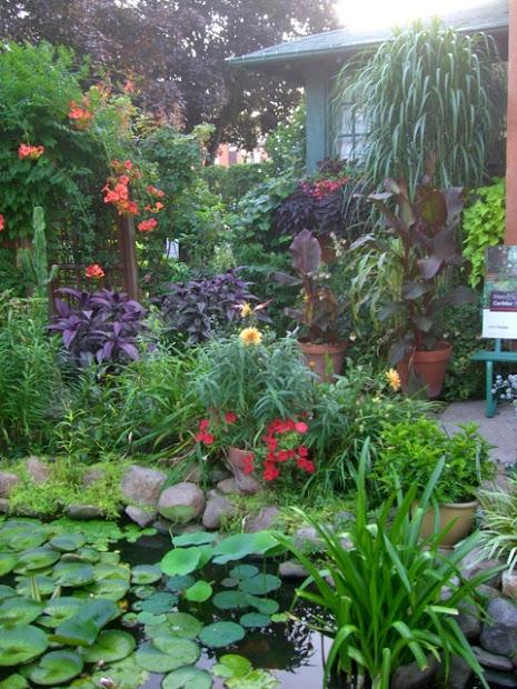 tropical garden in zone 5