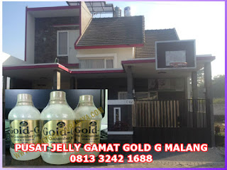 Pusat Jelly Gamat Gold G Malang Resmi GNE Trading