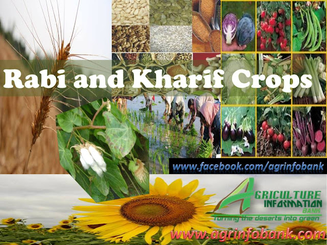 crop classifcation I www.agrinfobank.com