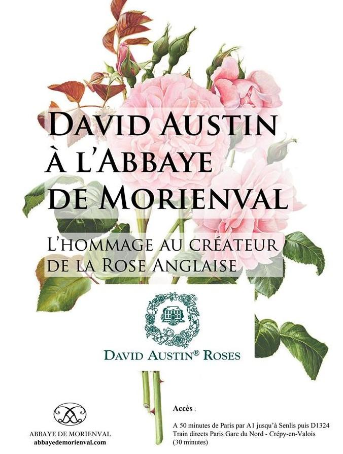 Conservatoire français des Roses Anglaises en Picardie
