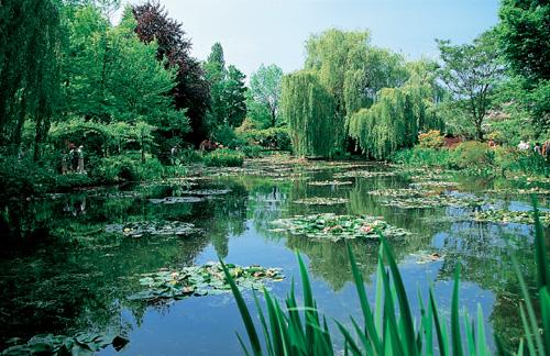Cuidados de las plantas y el jardin los jardines de - Cuidado de jardines ...