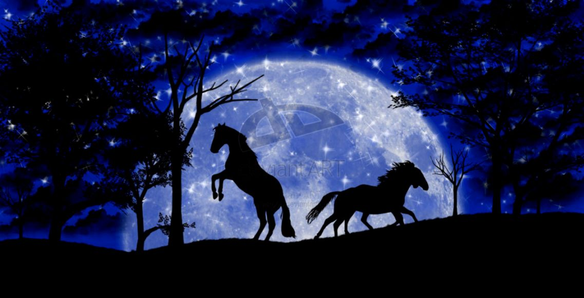 June Moon of Horses  earthmoonandstars