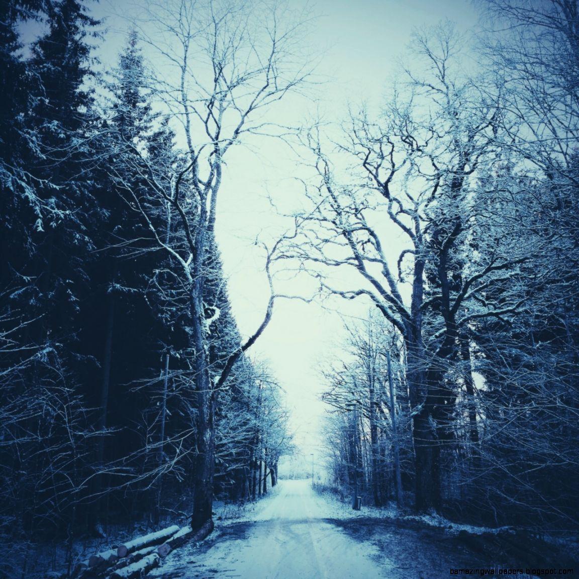 Joel Ericsson Photography — Winter is here ❄️
