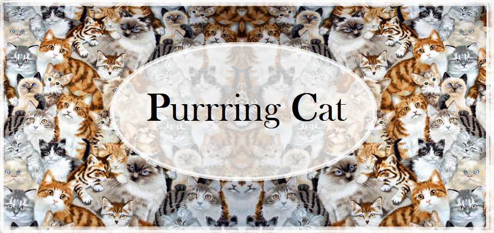Purrring Cat