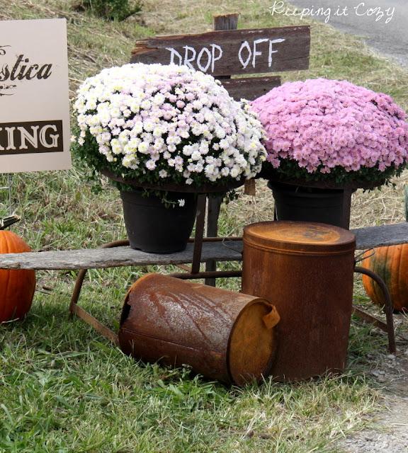 Keeping It Cozy: A Barn Sale