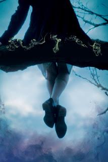 Imagem de capa do livro Adormecida, de Anna Sheehan