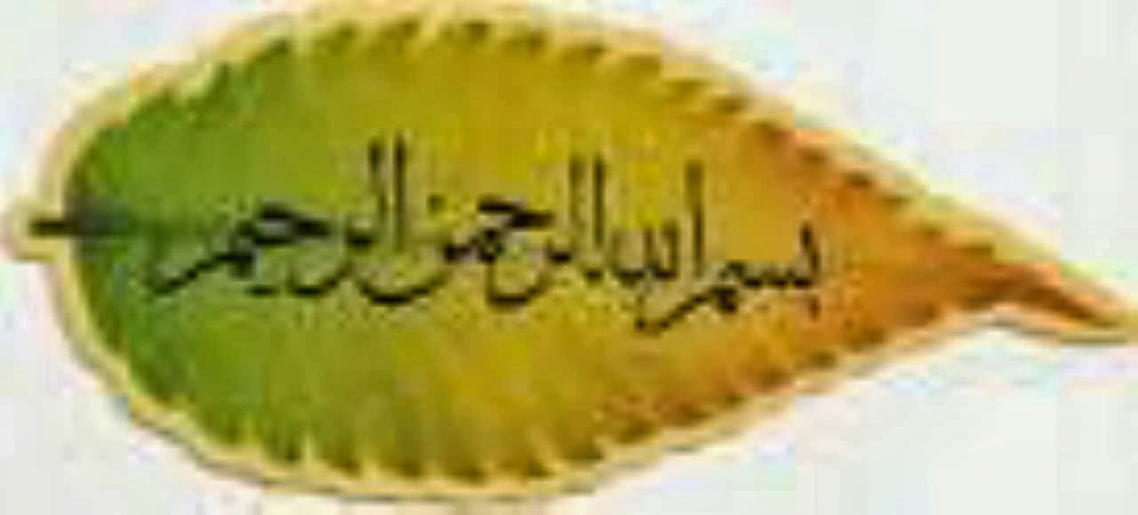 KERAMAT ILMU GHAIB TUMBUHAN
