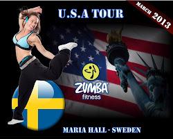 USA TOUR Mars 2013