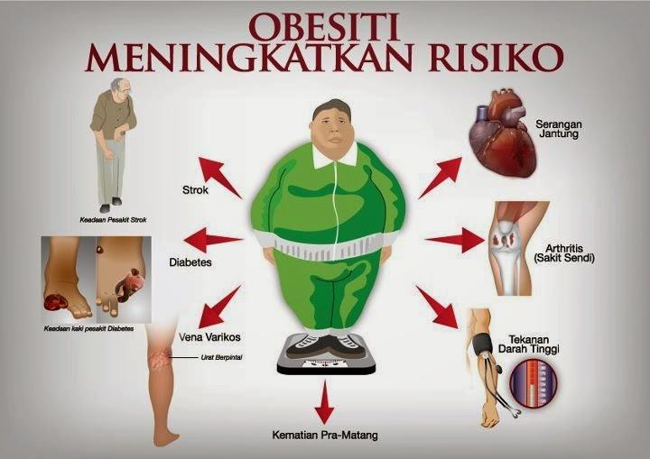Cara Diet Sehat Alami dengan Cepat