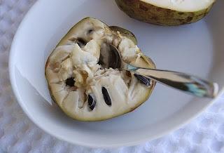 فاكهة القشطة وفوائدها