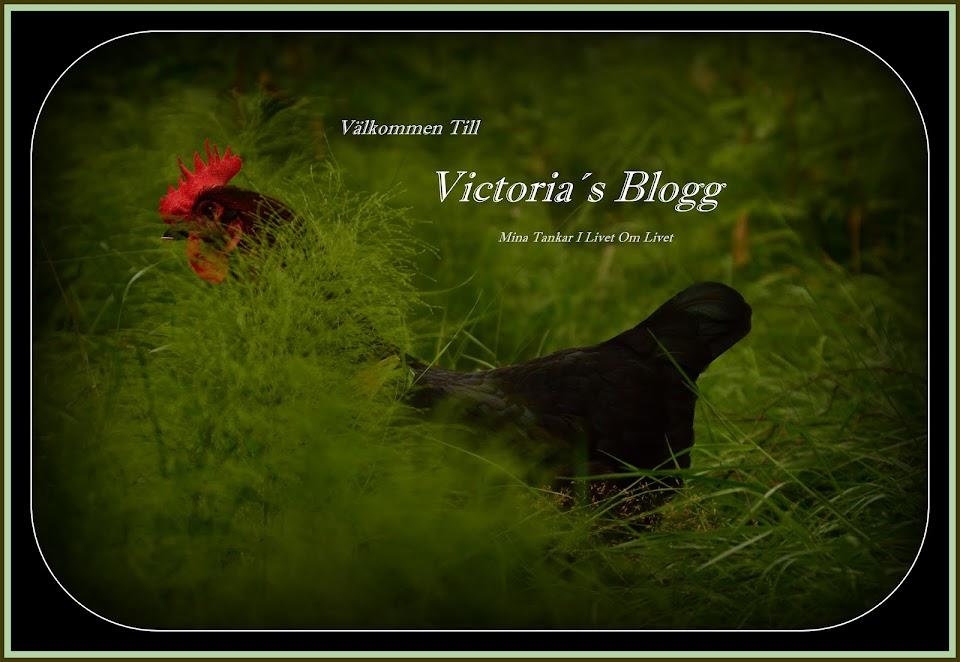 Victoria's Blogg