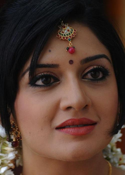vimalaraman saree hq nowatermark unseen pics