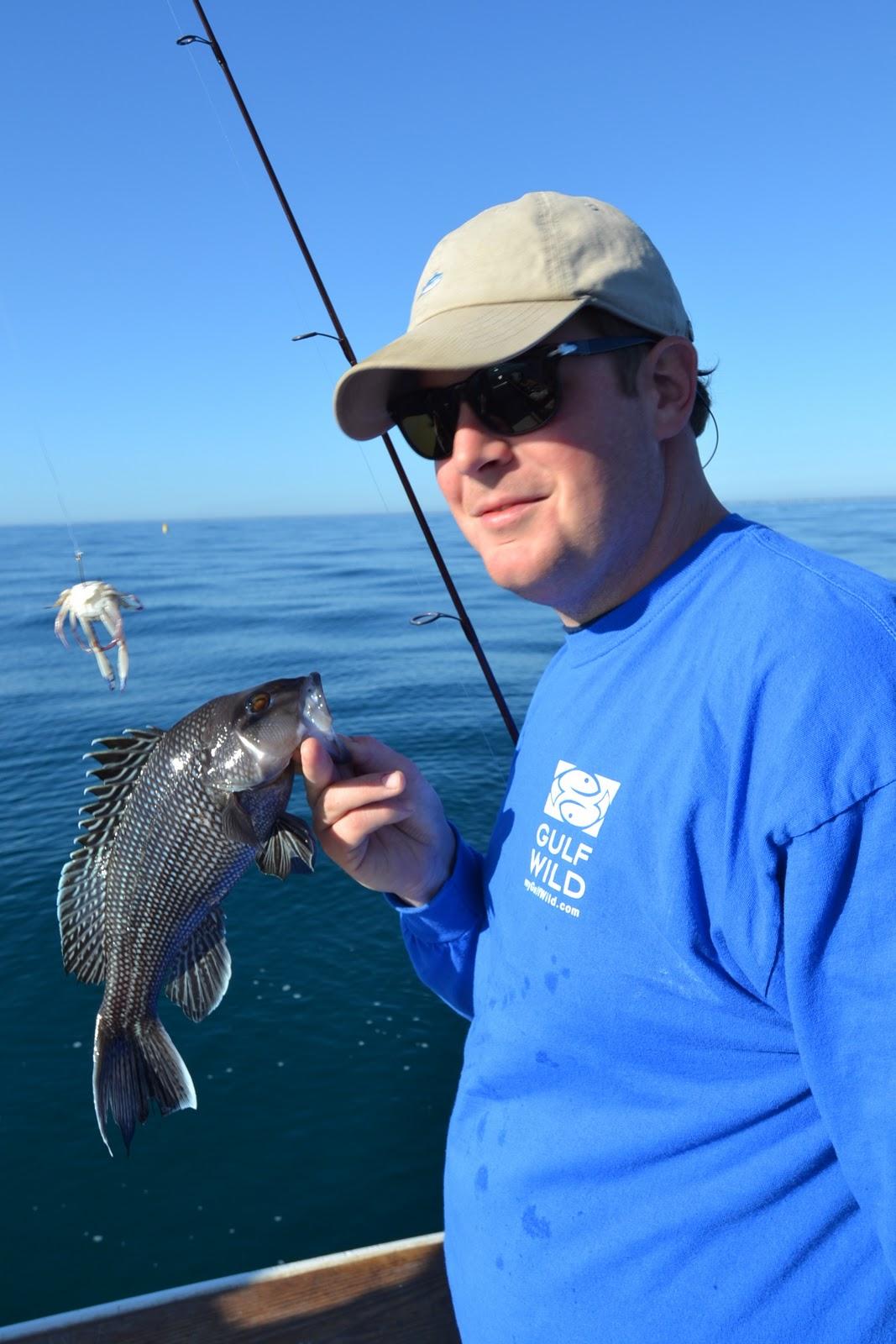 Murrells inlet sc fishing reports sheepshead december 2011 for Fishing charters murrells inlet sc