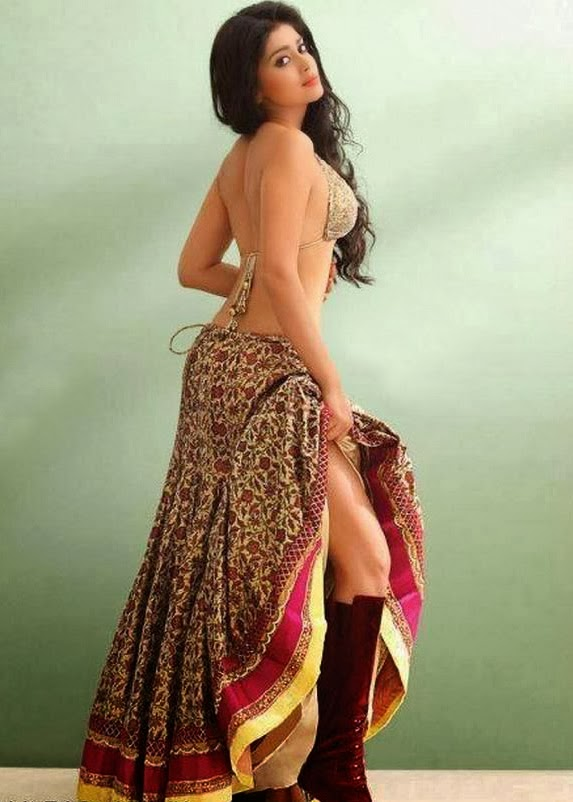 shriya hot backless photos   sexy photolite