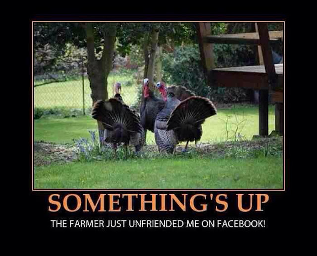 thanksgiving facebook joke