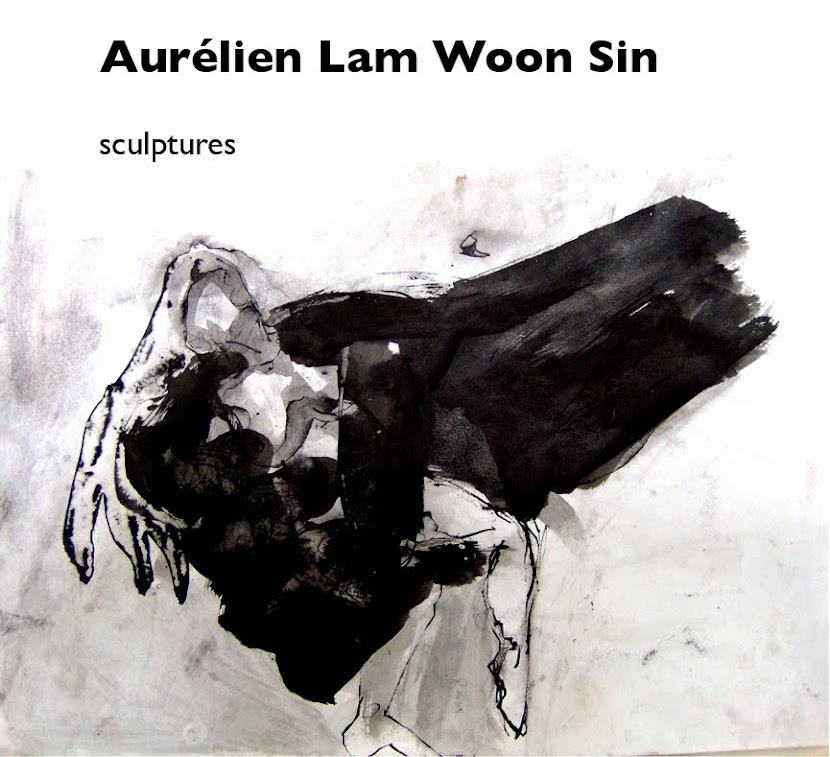 Aurélien Lam Woon Sin