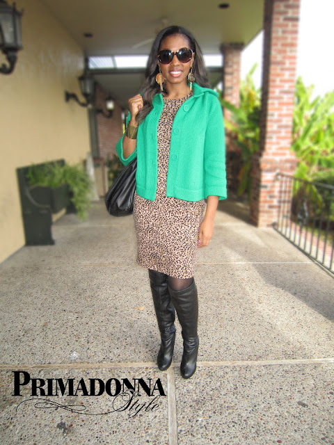 leopard animal print dress, michael antonio halpern knee boots, green cardigan