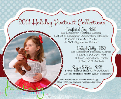 Christmas Holiday Photography Sessions by Fantasy Photography, LLC