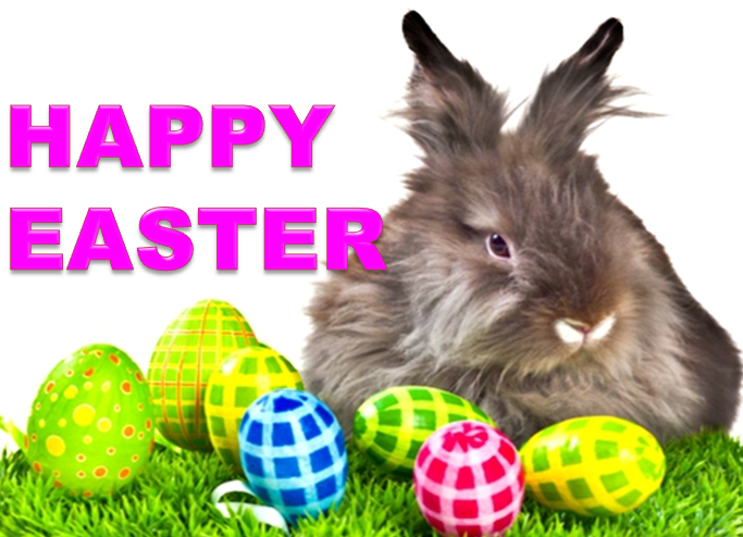 Easter Day Cute Bunny Images for Whatsapp, Facebook