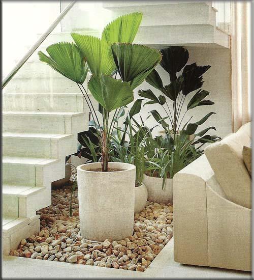 ideias jardim de inverno : ideias jardim de inverno:Construindo Nosso Lar: Escada da casa