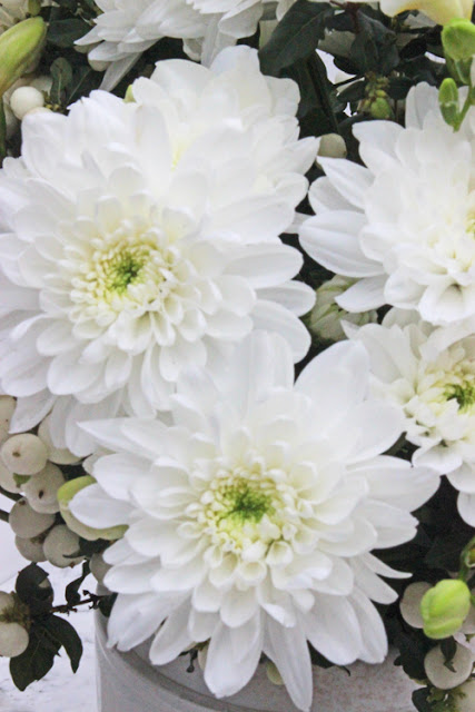 White Chrysanthemums in white vase