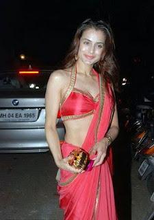 Amisha patel so cute in red saree