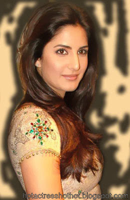 katrina kaif hot looking in a saree