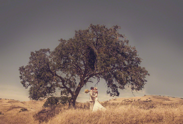 northern california rustic destination wedding, top california destination wedding locations